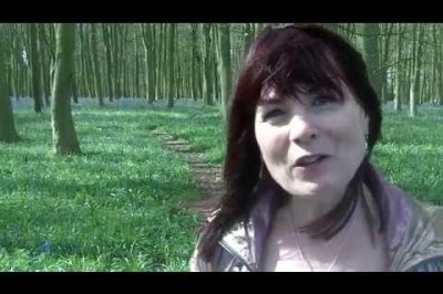 Introduction to the Channelled Faerie Songs