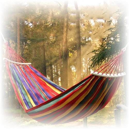 Hammocking: the science and art of daydreaming